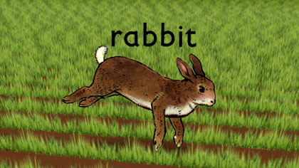 film still: *Rabbit* front title